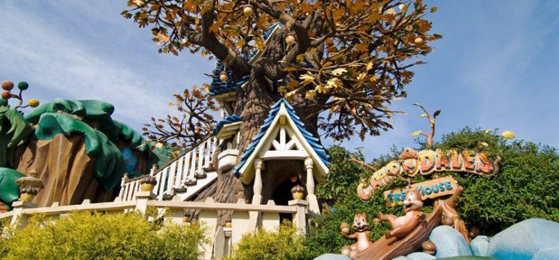 チップとデールのツリーハウスの外観